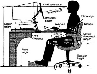 Office Ergonomic Evaluation - Larissa J. Osias e-Portfolio